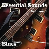 Essential Sounds Vol 1 Blues by Various Artists