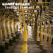 Transmit Fantastic by Danny Breaks