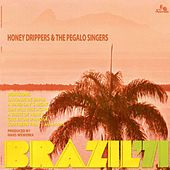 Brazil '71 by The Honeydrippers