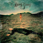 Something Wrong by Bang Gang