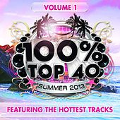 100% Top 40 Summer 2013, Vol. 1 (Featuring the Hottest Tracks) by Audio Groove