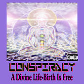 A Divine Life - Birth Is Free by Conspiracy