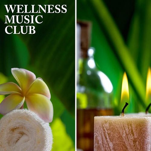Wellness Music Club by Various Artists