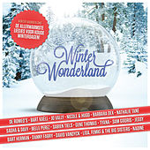 Winter Wonderland by Various Artists