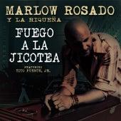 Fuego A La Jicotea (feat. Tito Puente, Jr.) - Single by Andy Monta