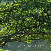 Canopy by Mike Murray