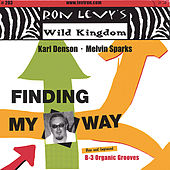 Finding My Way by Karl Denson