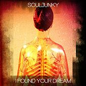 I Found Your Dream by Souljunky