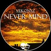 Never Mind - Single von Various Artists