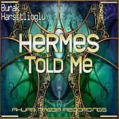 Hermes Told Me by Burak Harsitlioglu