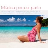 Música para el parto: los sonidos más suaves y relajantes para la madre y el bebé durante el embarazo y el nacimiento, y sonido ambiente blanco para el recién nacido by Various Artists