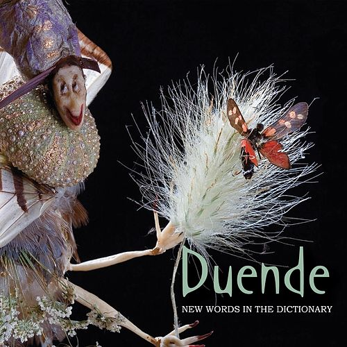 New Words In The Dictionary by Duende