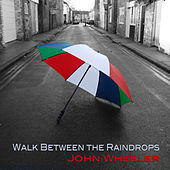 Walk Between the Raindrops by John Wheeler