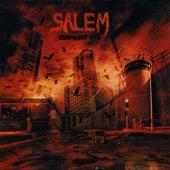 Necessary Evil by Salem