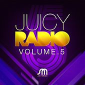 Juicy Radio Volume 5 by Various Artists