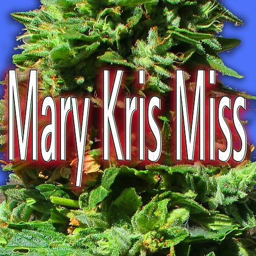 Mary Kris Miss by Joe Romersa