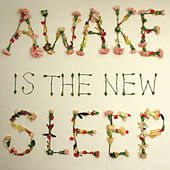 Awake Is The New Sleep by Ben Lee