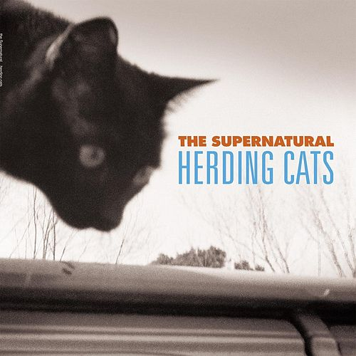 Herding Cats by Supernatural