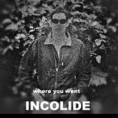 Where You Went (Dubstep) by Incolide