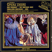The Best Of Opera Choirs by Various Artists