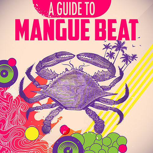 A Guide To Manguebeat by Various Artists