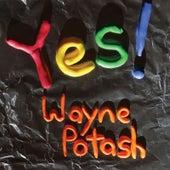 Yes! by Wayne Potash