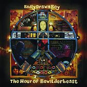 The Hour Of Bewilderbeast by Badly Drawn Boy