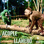 Acople Llanero Vol. 1 by Various Artists