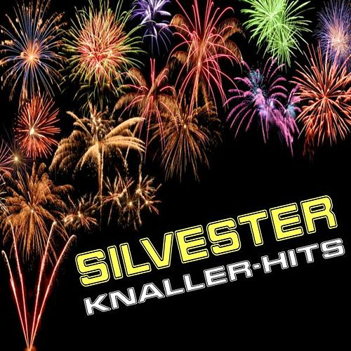 Silvester Knaller-Hits by Various Artists
