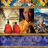 The Tibetan Healing Music of Nawang Khechog by Nawang Khechog