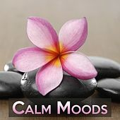 Calm Moods by Various Artists