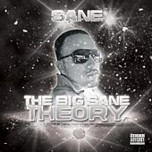The Big Sane Theory by Sane