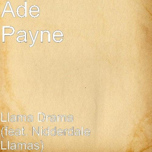 Llama Drama (feat. Nidderdale Llamas) by Ade Payne