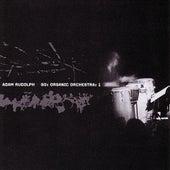 Go: Organic Orchestra: Vol. 1 by Adam Rudolph