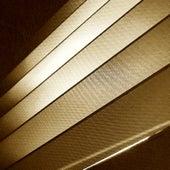 Scott Joplin the Lost Recordings (Remastered) von Scott Joplin