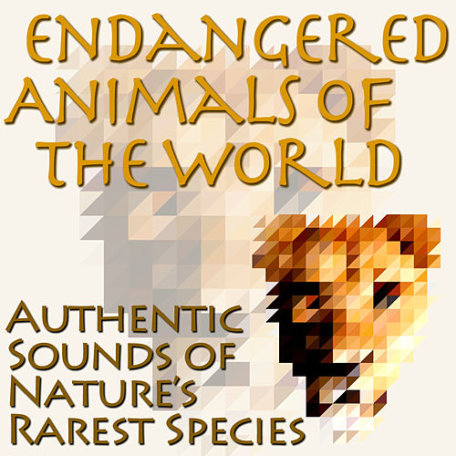 Endangered Animals Of The World - Authentic Sounds of Nature's Rarest Species by Dr. Sound Effects SPAM