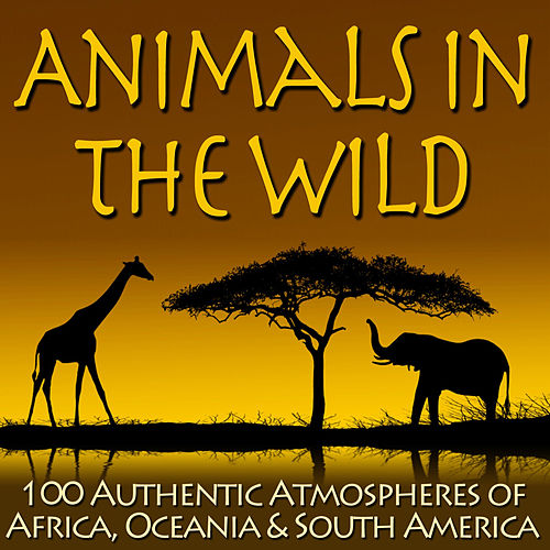 Animals In The Wild - 100 Authentic Atmospheres of Africa, Oceania & South America by Dr. Sound Effects SPAM
