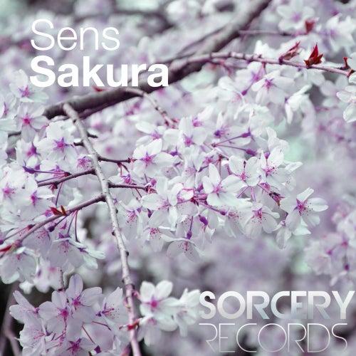 Sakura by S.E.N.S.