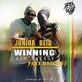 Winning Ain't Easy by Junior Reid