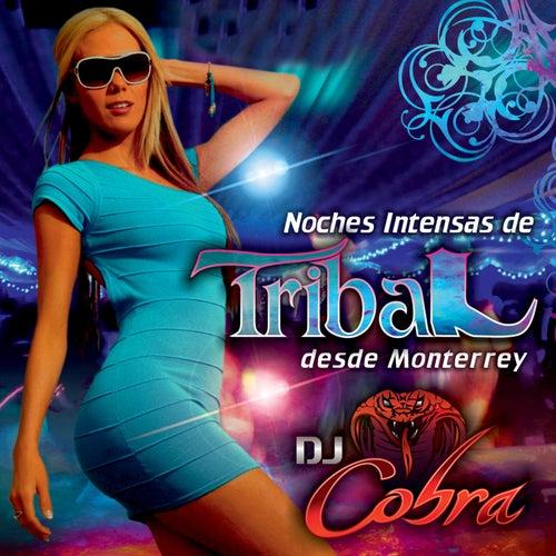 Noches Intensas De Tribal Desde Monterrey by DJ Cobra