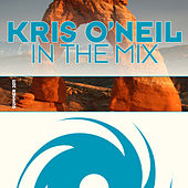 In The Mix, Summer 2011 von Various Artists