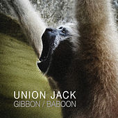 Gibbon by Union Jack