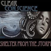 Shelter from the Storm by Clear Conscience