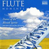 Flute Moments by Various Artists