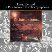 Strauss: Death and Transfiguration - Till Eulenspiegel's Merry Pranks by Park Avenue Chamber Symphony