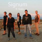 Il volo by Signum
