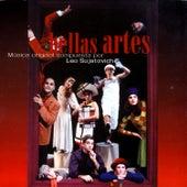 Bellas Artes by Leo Sujatovich