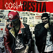 Bestia by Costa