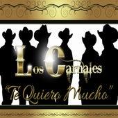 Te Quiero Mucho by Los Carnales