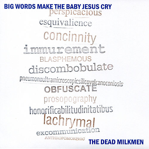 Big Words Make The Baby Jesus Cry by The Dead Milkmen